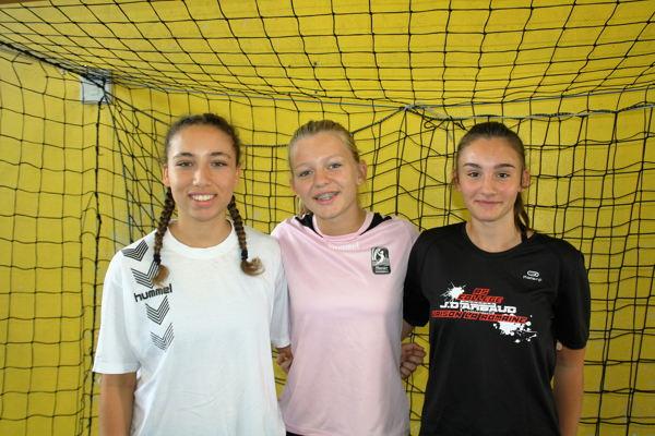 Les 3 sélectionnées ligue 2016 allégée